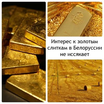 Коллаж: золотые слитки крупным планом, золотой слиток в золотой россыпи, поле