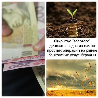 Коллаж из изображений купюр гривны номиналом 100 и 200; стопки монет на фоне земли; неба и колосящегося поля