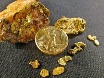 Золотая монета и кусок золота