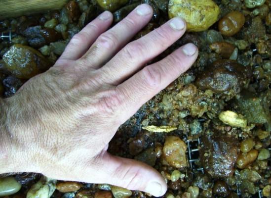 Рука над водой