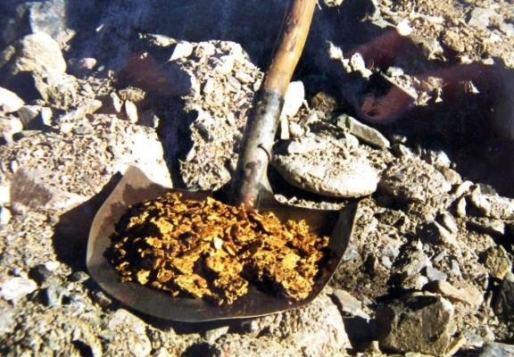 Золото - в лопате