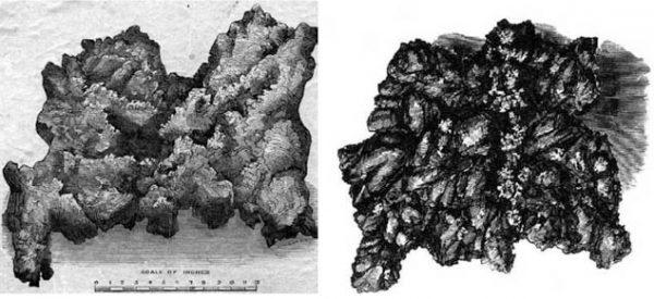 Рисунки Чарльза Уэббера (слева) и Фрэнсиса Фирна (справа)